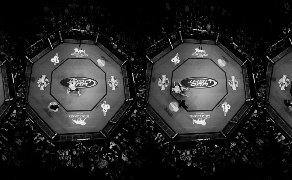 UFC91_Couture_vs_Lesnar_24x6_RET